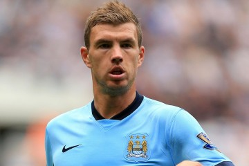 Picture of Edin Dezeko
